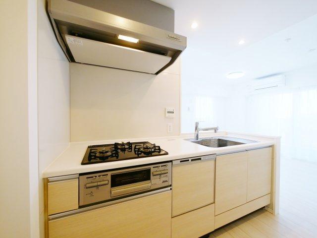 人気の対面キッチンには、ディスポーザー、食器洗乾燥機、ガラストップコンロが標準装備のハイスペックなキッチンです