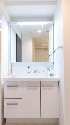 【独立洗面台】アヴィニティー銀座東 10階 最 上階 角 部屋 リ フォーム済