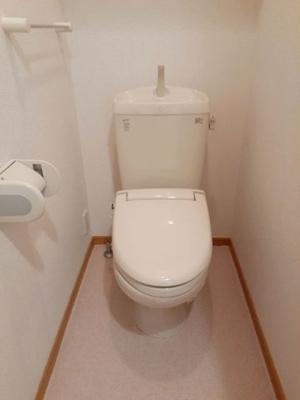 【トイレ】コニファー