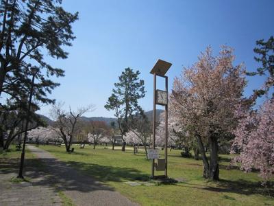 南郷公園です!桜の時期はとってもキレイです♪