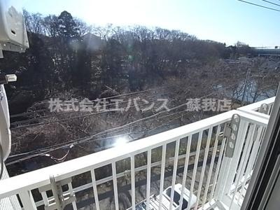 【展望】ロイヤルコート