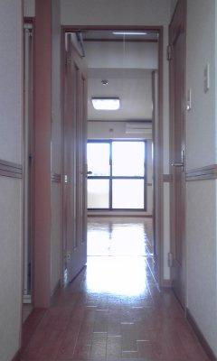 きれいな玄関です