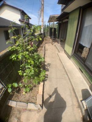 【庭】常滑市小林町アメチンハウス