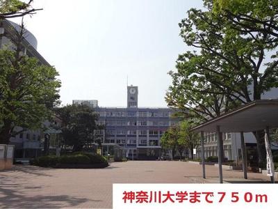 神奈川大学まで750m