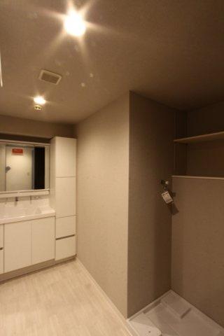 ランドリースペースの上にはカウンターが設置されています。収納スペースとしてあると嬉しい空間ですね。