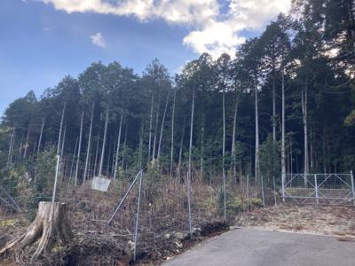 【外観】小野尻売り山林