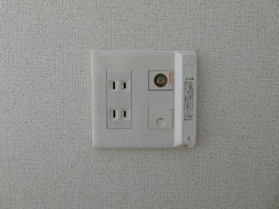 【設備】サクラ
