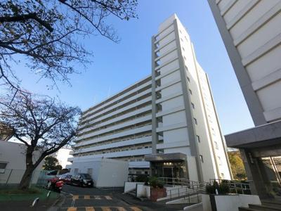 総戸数300戸、1975年3月築、自主管理物件です。