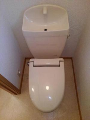 【トイレ】メゾンマルベリー