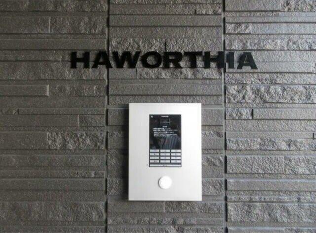 【セキュリティ】HAWORTHIA