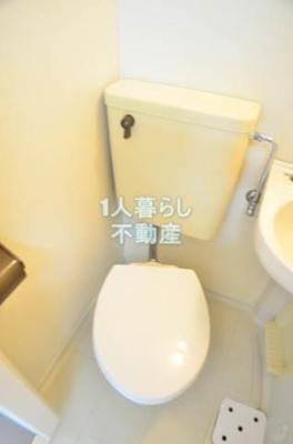 お手洗いきれいです