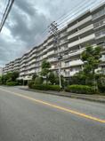 藤和上永谷ハイタウン リノベーション済 3LDKの画像