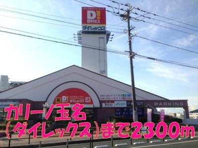 カリーノ玉名(ダイレックス)まで2300m