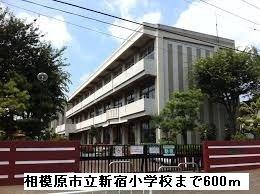 相模原市立新宿小学校まで600m