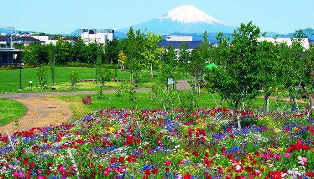 花と緑のふれあいセンター