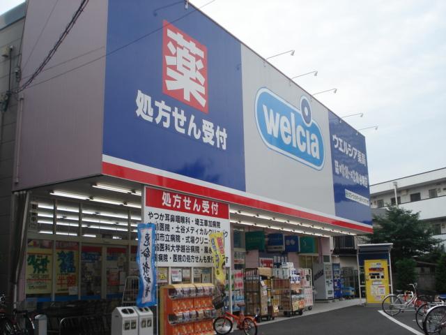 ウエルシア草加柳島店まで1,273m