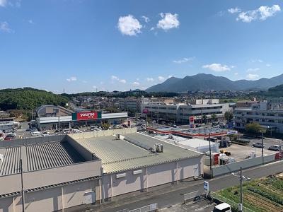 【展望】ザ・プレース永犬丸(No.765)