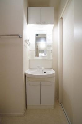 収納棚もある洗髪洗面化粧台です