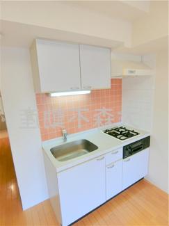 キッチン 2口ガスグリル付システムキッチン!まな板が置ける調理スペースのある大きめ