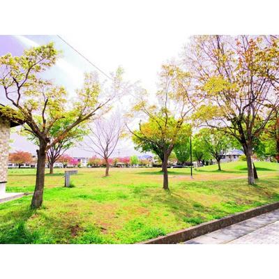 公園「三本柳中央公園まで343m」