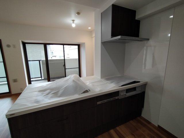 新品の対面型システムキッチンは食洗器付。お掃除が楽で使い勝手も良いですね!
