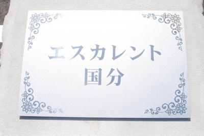 【その他】エスカレント国分