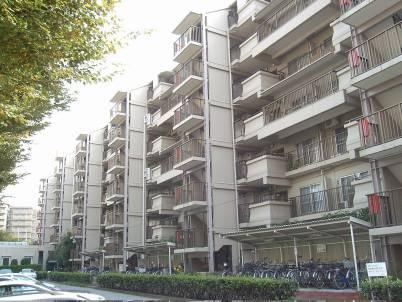 南東向き4階部分にて陽当り良好 大切なペットと一緒に暮らせます 新規内装リノベーション 住宅ローン減税適合物件