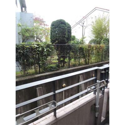 【展望】ベルファース練馬