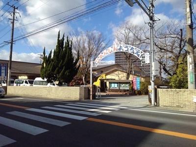 純心幼稚園まで950m