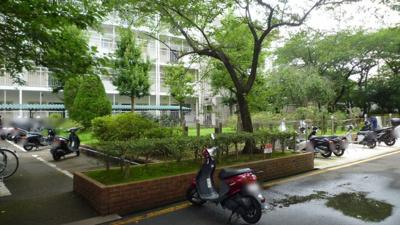 【駐輪場】桂川ハイツ3号館