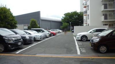【駐車場】桂川ハイツ3号館