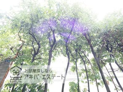 【展望】ステージファースト錦糸町