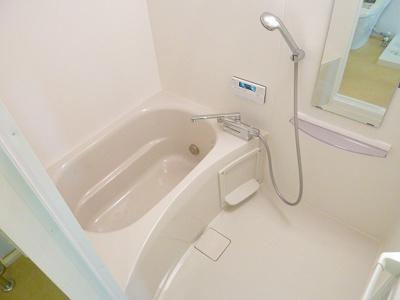 【浴室】ニシオギソウ