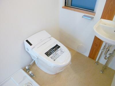 【トイレ】ニシオギソウ