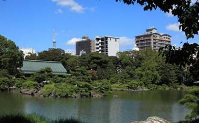 【周辺】清澄白河レジデンス弐番館