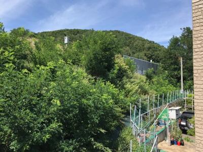 敷地裏側は建物がなく緑に囲まれたロケーションの良い立地(写真はバルコニーからの眺め)