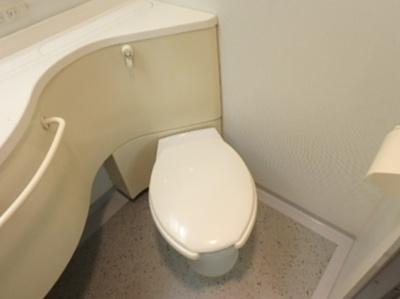 【トイレ】ロイヤルグリーン本郷