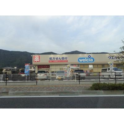 ドラックストア「ウエルシア千曲内川店まで455m」