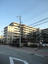 エンゼルハイムパークステージ弐番館 7階の画像