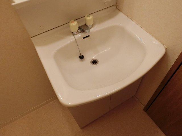 ドリーム5(柏原市太平寺) 独立洗面台