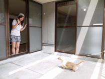 ワンコと私の夢空間 広がるふくらむ 30畳!のお部屋「サンフェアリーⅢ」の画像