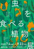 虫を食べる植物展2020 鶴見緑地情報♪の画像