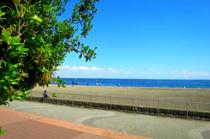 大田区にあるおすすめの公園を紹介!城南島海浜公園と平和の森公園の画像