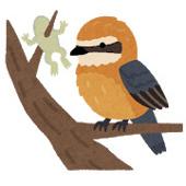鳥取も紅葉シーズンの画像