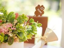 向ケ丘遊園駅でベランダガーデニングするときにおすすめの花屋は?の画像