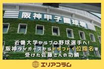 近畿大学からプロ野球選手へ!阪神タイガースからドラフト1位指名を受けた佐藤さんの功績の画像