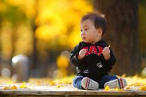 息子に初めての紅葉を見せてみたの画像