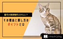 猫可の賃貸物件は少ない?その理由と探し方のポイントとはの画像