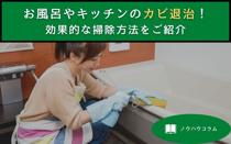 お風呂やキッチンのカビ退治!効果的な掃除方法をご紹介の画像