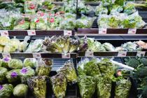鶴見区周辺エリアでおすすめのスーパーは?人気の2店舗をご紹介!の画像
